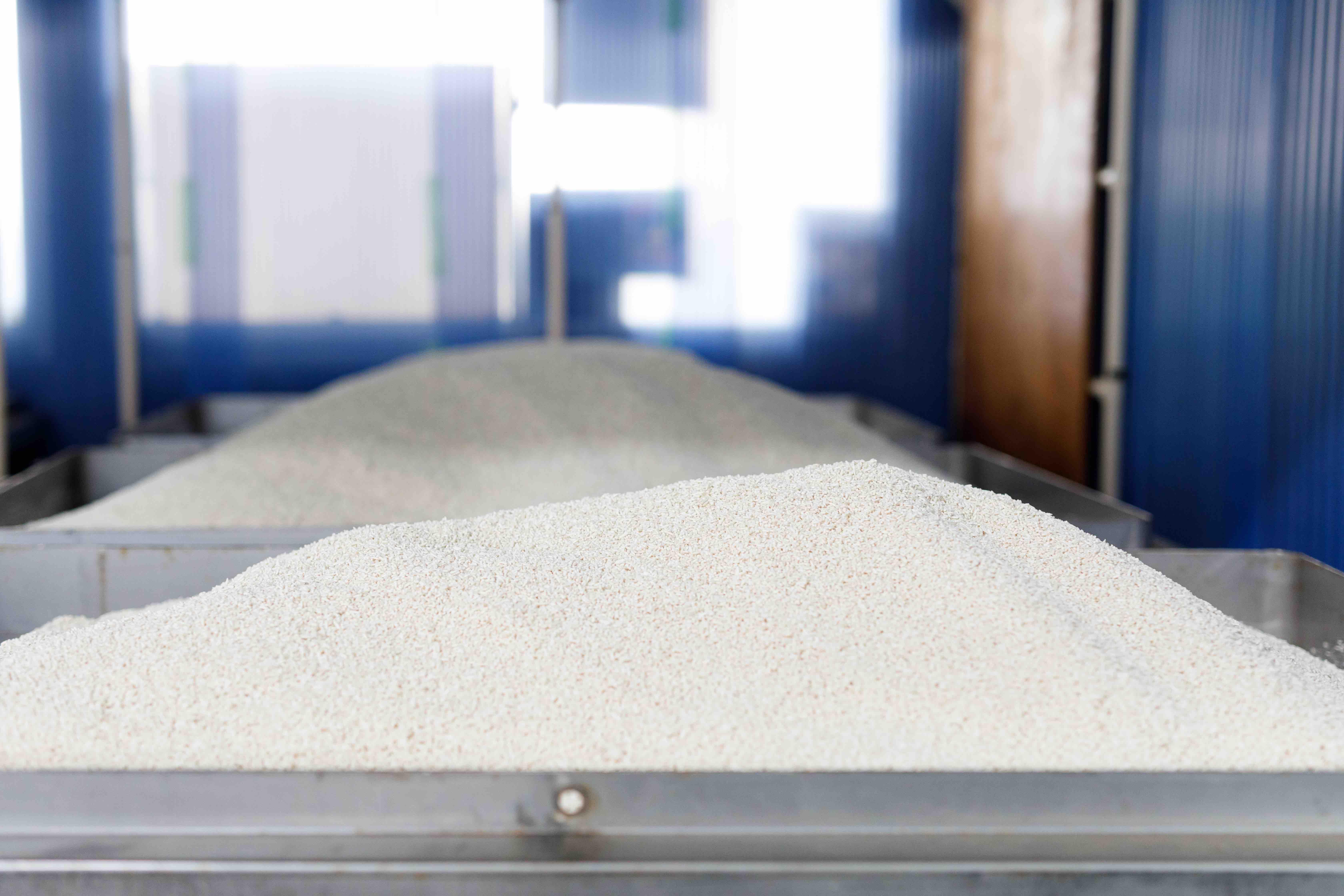 *こちらは米麹。お米で麹菌を育てたもので、米味噌(白味噌)に使われます。