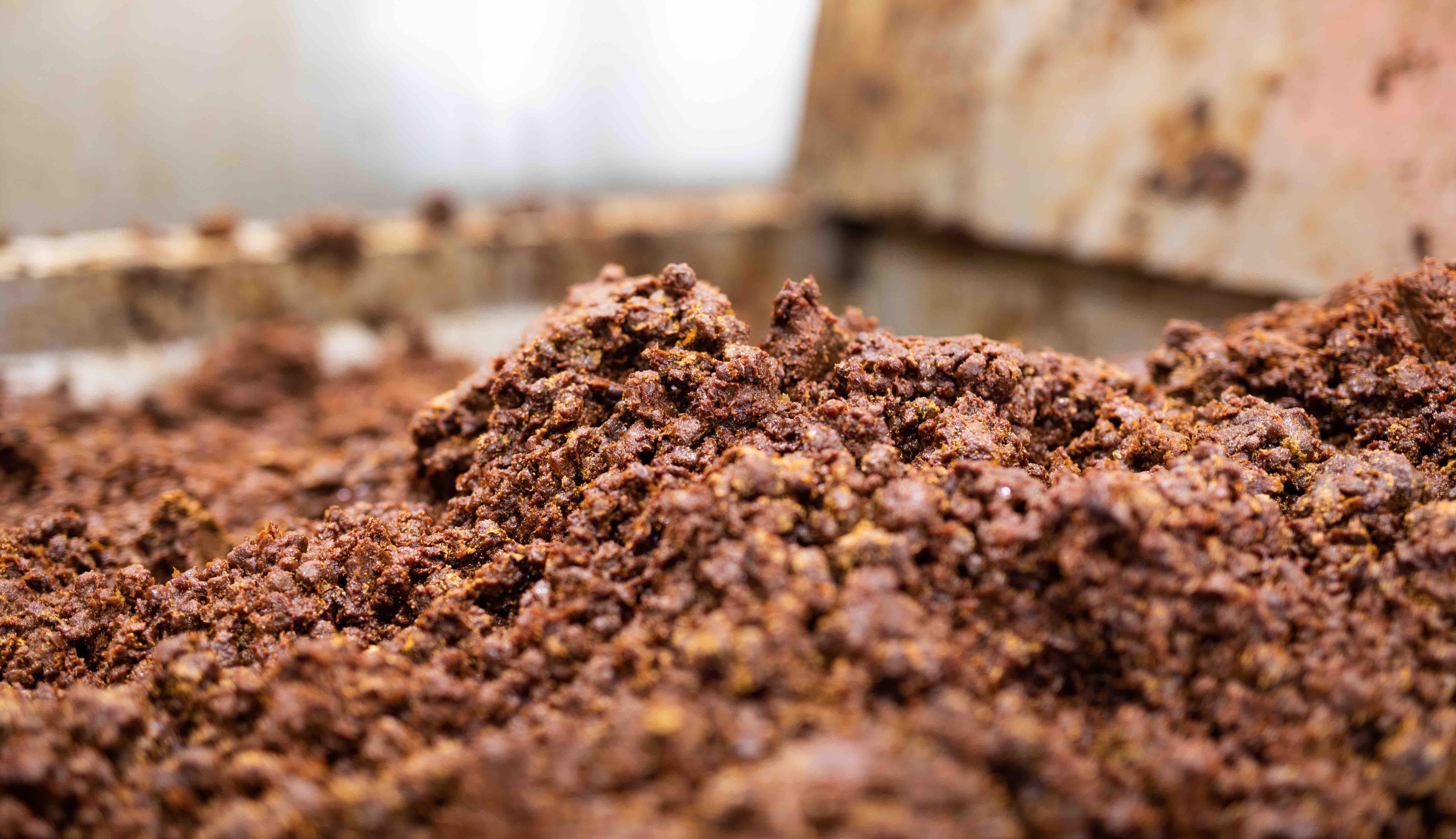 *真心を込めてつくられたお味噌。工場の中はお豆のいい香りがしました。